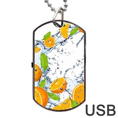 Fruits Water Vegetables Food Dog Tag Usb Flash (one Side) by BangZart