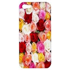 Rose Color Beautiful Flowers Apple Iphone 5 Hardshell Case by BangZart