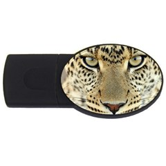 Leopard Face Usb Flash Drive Oval (4 Gb) by BangZart