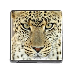 Leopard Face Memory Card Reader (square) by BangZart