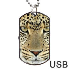 Leopard Face Dog Tag Usb Flash (one Side) by BangZart