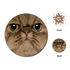 Cute Persian Catface In Closeup Playing Cards (round)  by BangZart