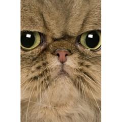 Cute Persian Catface In Closeup 5 5  X 8 5  Notebooks by BangZart