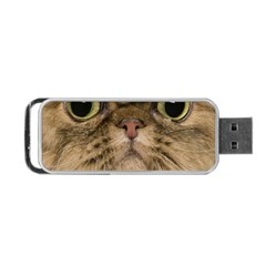 Cute Persian Catface In Closeup Portable Usb Flash (two Sides) by BangZart