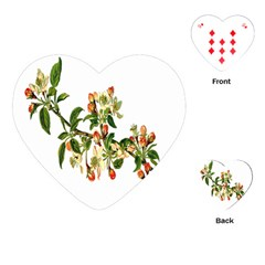 Apple Branch Deciduous Fruit Playing Cards (heart)  by Nexatart