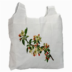 Apple Branch Deciduous Fruit Recycle Bag (one Side) by Nexatart