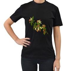 Apple Branch Deciduous Fruit Women s T Shirt (black) by Nexatart