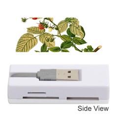 Berries Berry Food Fruit Herbal Memory Card Reader (stick)  by Nexatart