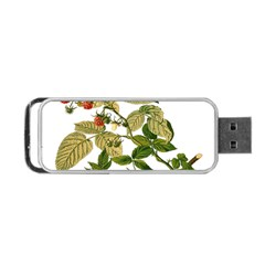 Berries Berry Food Fruit Herbal Portable Usb Flash (one Side) by Nexatart