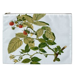 Berries Berry Food Fruit Herbal Cosmetic Bag (xxl)  by Nexatart
