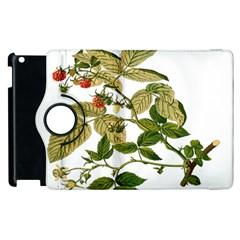 Berries Berry Food Fruit Herbal Apple Ipad 2 Flip 360 Case by Nexatart