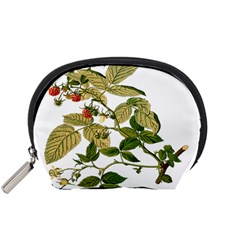 Berries Berry Food Fruit Herbal Accessory Pouches (small)  by Nexatart