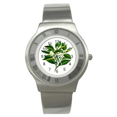 Bitter Branch Citrus Edible Floral Stainless Steel Watch by Nexatart