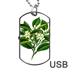 Bitter Branch Citrus Edible Floral Dog Tag Usb Flash (two Sides) by Nexatart