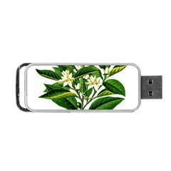 Bitter Branch Citrus Edible Floral Portable Usb Flash (one Side) by Nexatart