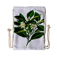 Bitter Branch Citrus Edible Floral Drawstring Bag (small) by Nexatart