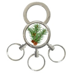 Branch Floral Green Nature Pine 3 Ring Key Chains by Nexatart