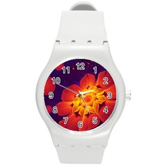 Royal Blue, Red, And Yellow Fractal Gerbera Daisy Round Plastic Sport Watch (m) by beautifulfractals