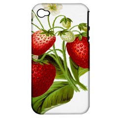 Food Fruit Leaf Leafy Leaves Apple Iphone 4/4s Hardshell Case (pc+silicone) by Nexatart