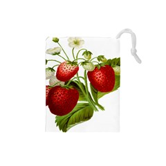 Food Fruit Leaf Leafy Leaves Drawstring Pouches (small)  by Nexatart
