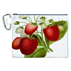 Food Fruit Leaf Leafy Leaves Canvas Cosmetic Bag (xxl) by Nexatart