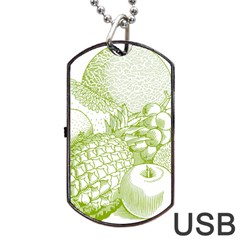 Fruits Vintage Food Healthy Retro Dog Tag Usb Flash (two Sides) by Nexatart