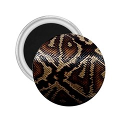 Snake Skin Olay 2 25  Magnets by BangZart