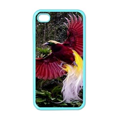 Cendrawasih Beautiful Bird Of Paradise Apple Iphone 4 Case (color) by BangZart