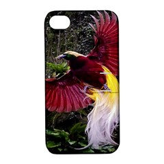 Cendrawasih Beautiful Bird Of Paradise Apple Iphone 4/4s Hardshell Case With Stand by BangZart