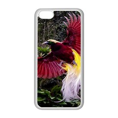 Cendrawasih Beautiful Bird Of Paradise Apple Iphone 5c Seamless Case (white) by BangZart