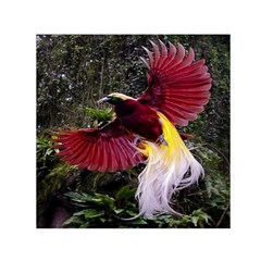 Cendrawasih Beautiful Bird Of Paradise Small Satin Scarf (square)