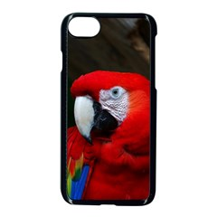 Scarlet Macaw Bird Apple Iphone 7 Seamless Case (black) by BangZart