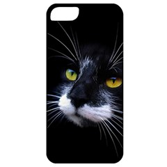 Face Black Cat Apple Iphone 5 Classic Hardshell Case by BangZart