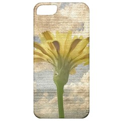 Shabby Chic Style Flower Over Blue Sky Photo  Apple Iphone 5 Classic Hardshell Case by dflcprints