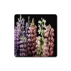 Flowers Square Magnet by Valentinaart