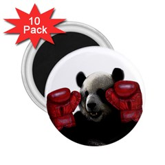 Boxing Panda  2 25  Magnets (10 Pack)  by Valentinaart