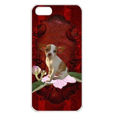 Sweet Little Chihuahua Apple Iphone 5 Seamless Case (white) by FantasyWorld7