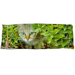 Hidden Domestic Cat With Alert Expression Body Pillow Case Dakimakura (two Sides) by dflcprints