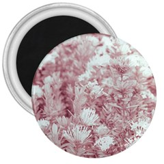 Pink Colored Flowers 3  Magnets by dflcprints