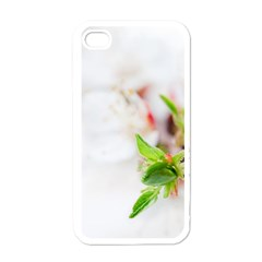 Fragility Flower Petals Tenderness Leaves  Apple Iphone 4 Case (white) by amphoto