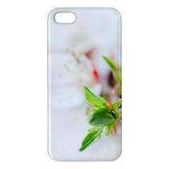Fragility Flower Petals Tenderness Leaves  Iphone 5s/ Se Premium Hardshell Case by amphoto