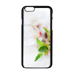 Fragility Flower Petals Tenderness Leaves  Apple Iphone 6/6s Black Enamel Case by amphoto