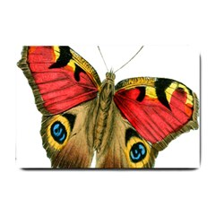 Butterfly Bright Vintage Drawing Small Doormat  by Nexatart