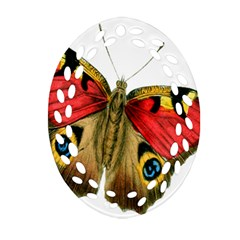 Butterfly Bright Vintage Drawing Oval Filigree Ornament (two Sides) by Nexatart