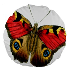 Butterfly Bright Vintage Drawing Large 18  Premium Round Cushions by Nexatart