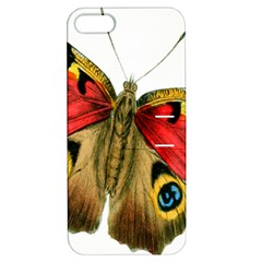Butterfly Bright Vintage Drawing Apple Iphone 5 Hardshell Case With Stand by Nexatart
