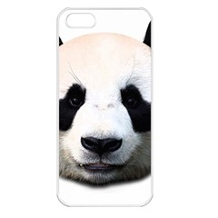 Panda Face Apple Iphone 5 Seamless Case (white) by Valentinaart