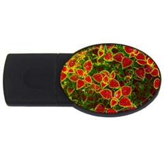 Flower Red Nature Garden Natural Usb Flash Drive Oval (4 Gb) by Nexatart