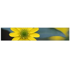 Flower Petals Close Up Blurred  Flano Scarf (large) by amphoto
