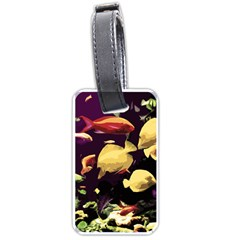 Tropical Fish Luggage Tags (one Side)  by Valentinaart
